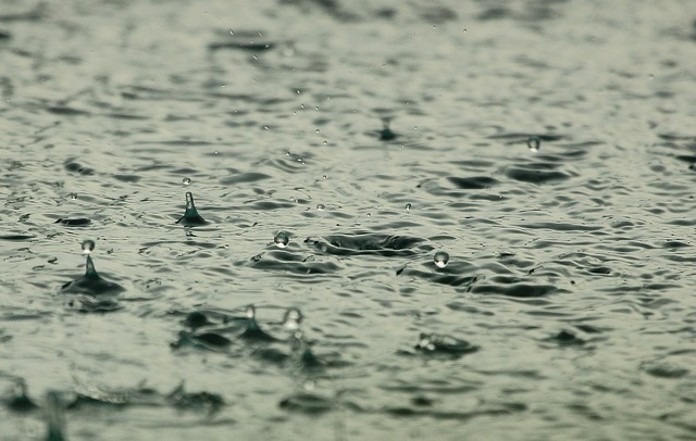 Rain in parking lot, postponing sweeping service by Universal Site Services.